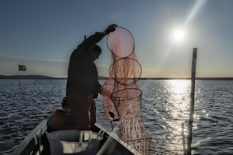pesca in laguna