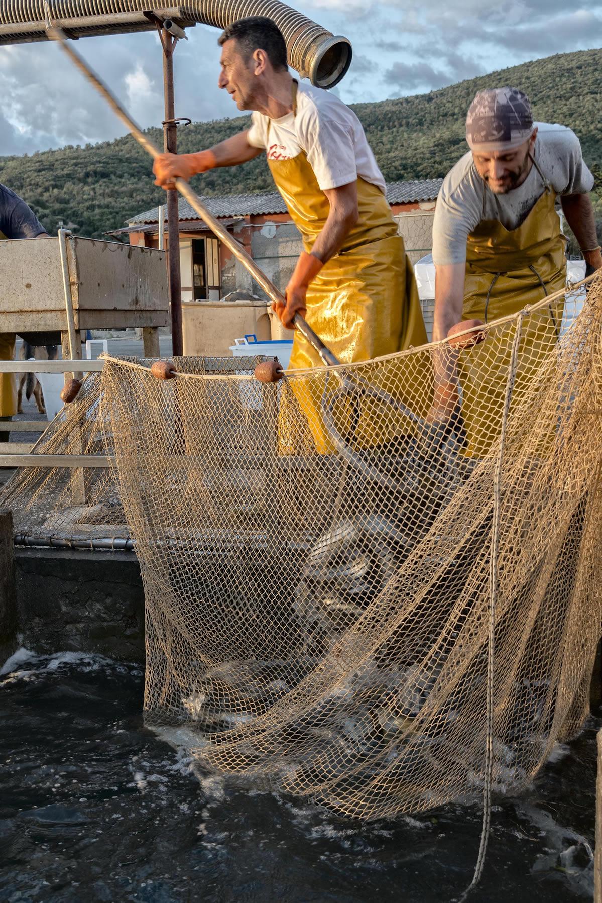presidio pesca 1